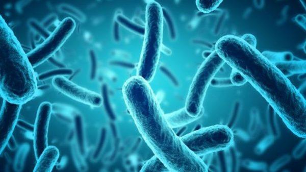 las superbacterias se hacen cada vez más fuertes