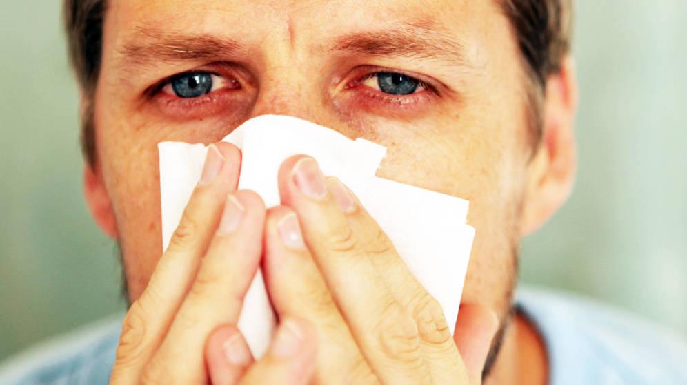alergias fitoterapia