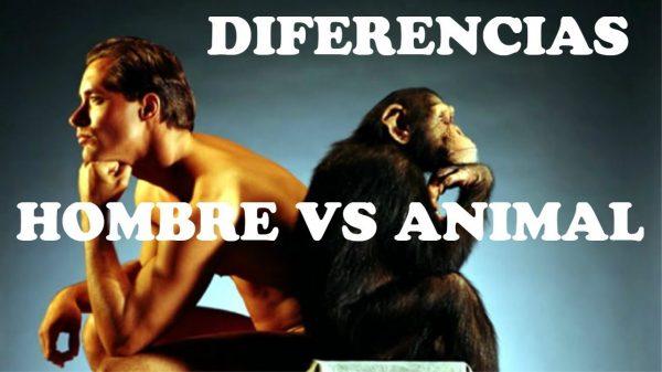 diferencia hombre animales