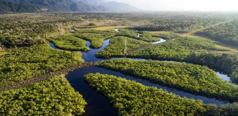 Sinodo Amazónico