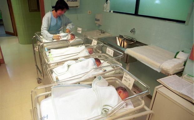 familia natalidad