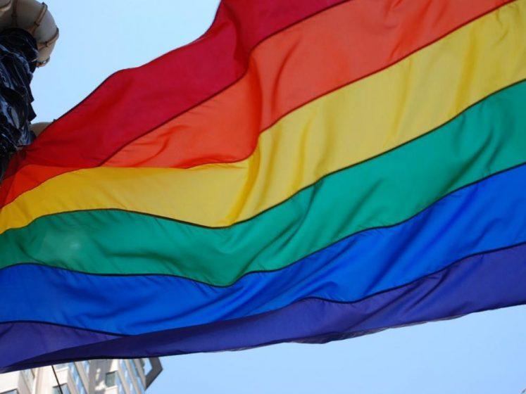 Homosexualismo político